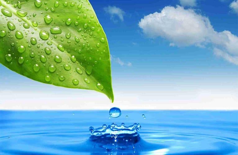 Water – Your Beauty Elixir